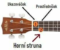 akord F