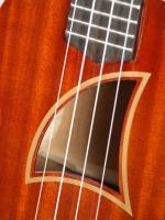 Eddy Finn ukulele