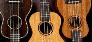 jak vybrat správnou velikost ukulele